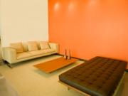orangeambient.jpg