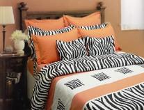 zebra.jpg